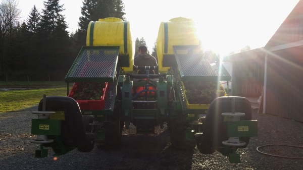 water wheel transplanter
